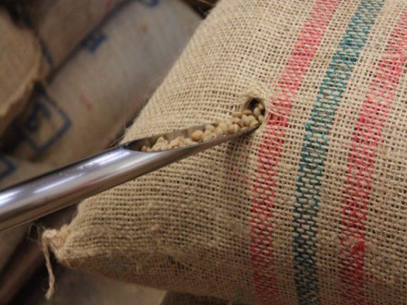 Federación Tolima, el nuevo programa por el que los productores pueden recibir sobreprecio por su café