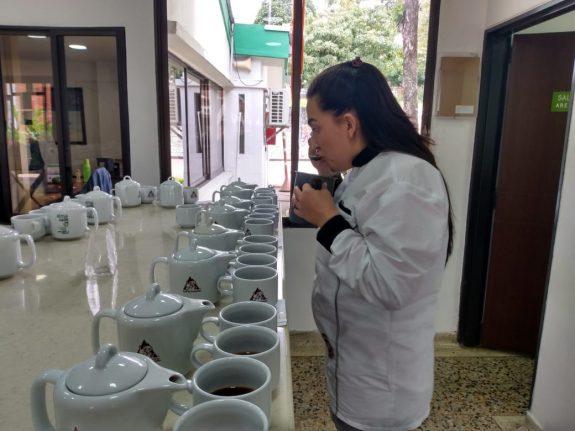 El Tolima, presente con 161 lotes en la quinta versión del concurso Colombia Tierra de Diversidad