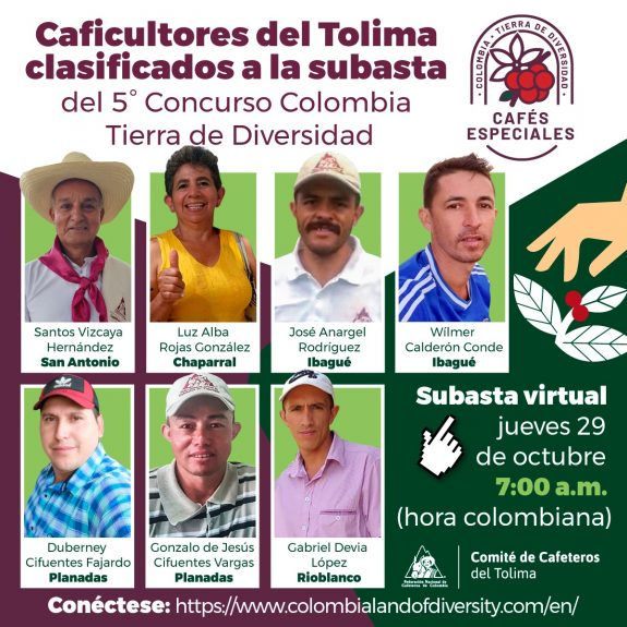 Siete lotes de café del Tolima, a conquistar el mundo